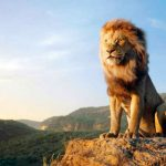 School Showed Lion King at Fundraiser, Disney Charges $ For Infringement