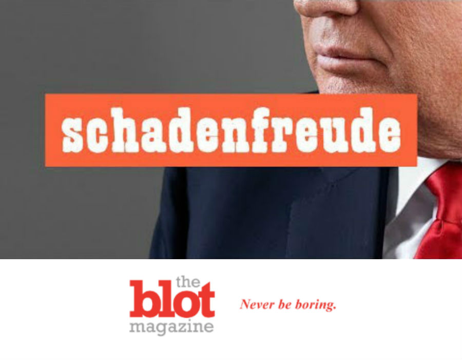 Trump Covid Infection Spikes Citizen Research into Schadenfreude