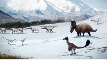 Crazy! Arctic Dinosaurs Used to Live in Snowy Winter Conditions