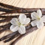 Wait, What? Most of Earth's Vanilla Comes From Madagascar?