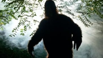 Oklahoma Desperate for Tourist$, Offers $2.1 Million Bigfoot Bounty